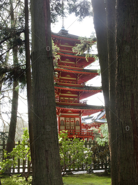 Japanese garden and Pagoda in Golden Gate Park