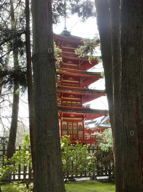 Japanese garden and Pagoda in Golden Gate Park