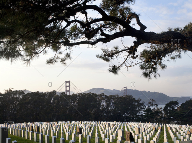 October 8, 2015 - San Francisco, California: Headstones at the San Francisco National Cemetery with view of Golden Gate Bridge