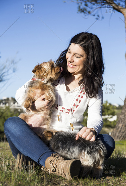 Happy young woman with her Yorkshire Terriers on a meadow