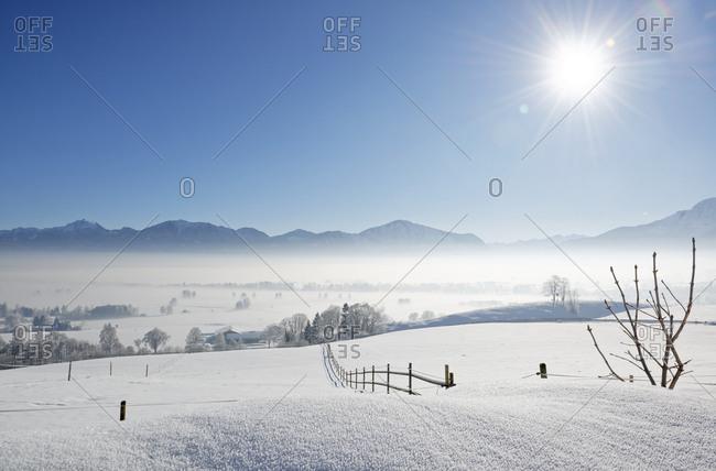 Germany- Loisach Valley near Grossweil- morning mist over Loisachmoor