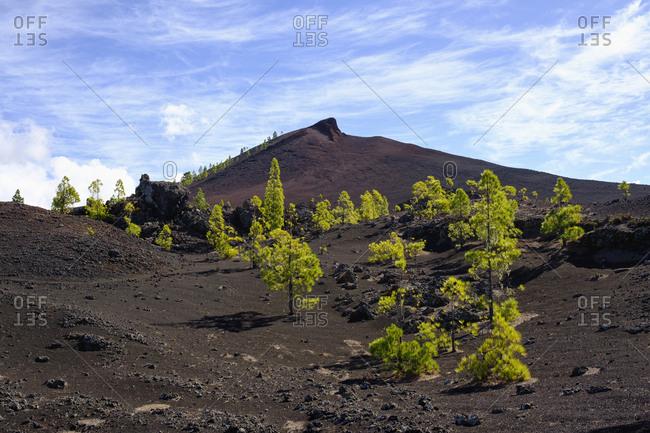 Spain- Canary islands- Tenerife- Montana Negra oder Volcan Garachico near El Tanque