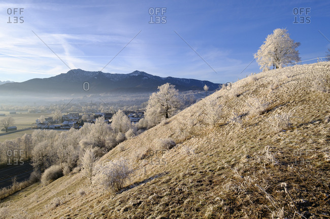 Germany- Bavaria- Grossweil- winter morning
