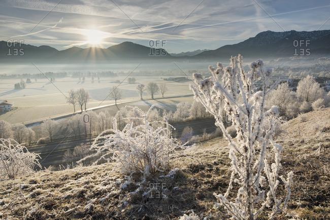 Germany- Bavaria- Grossweil- sunrise in winter