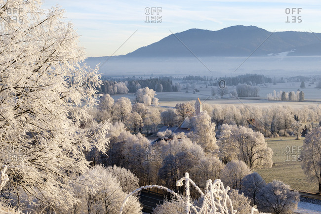 Germany- Bavaria- Grossweil- winter morning with hoarfrost