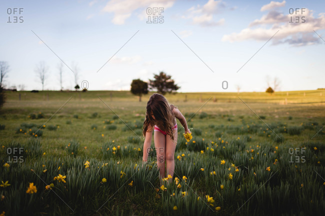 Girl picking yellow flowers in a field on a farm