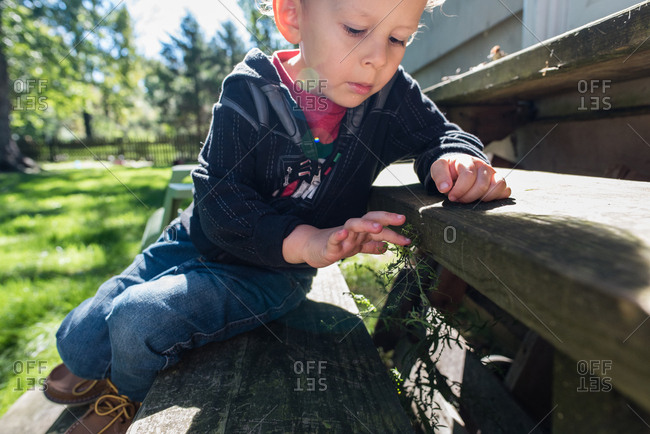 Boy sitting on stairs playing with a piece of grass