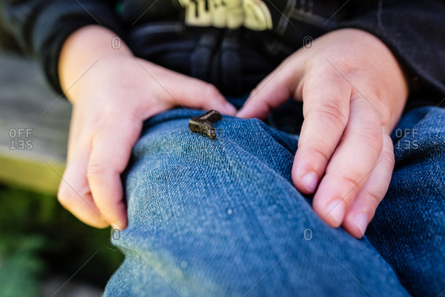 Close-up of a boy with a caterpillar crawling on his jeans