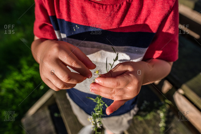 Boy standing on steps plucking a flower from a weed