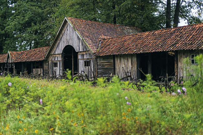 Antique barn in Dutch farmyard.