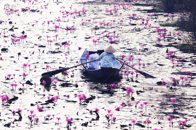 Women in traditional costume sitting on boat in lake with lotus flowers