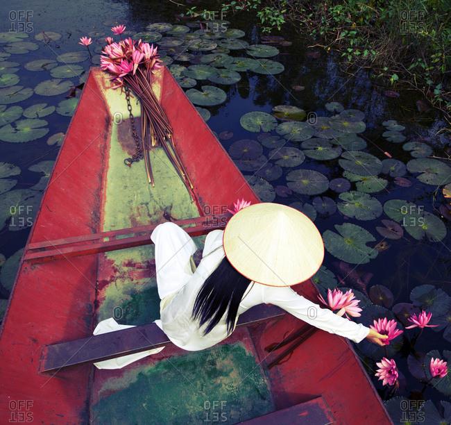 Vietnamese woman wearing traditional costume, picking lotus flowers in lake
