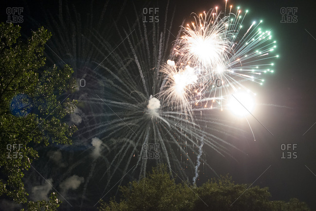 Fireworks show over trees at night
