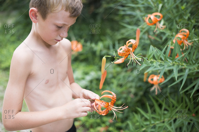 Boy holding a tiger lily