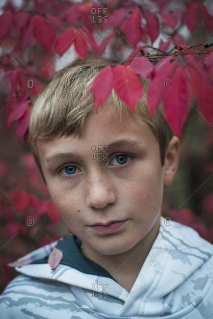 Boy by a fall branch