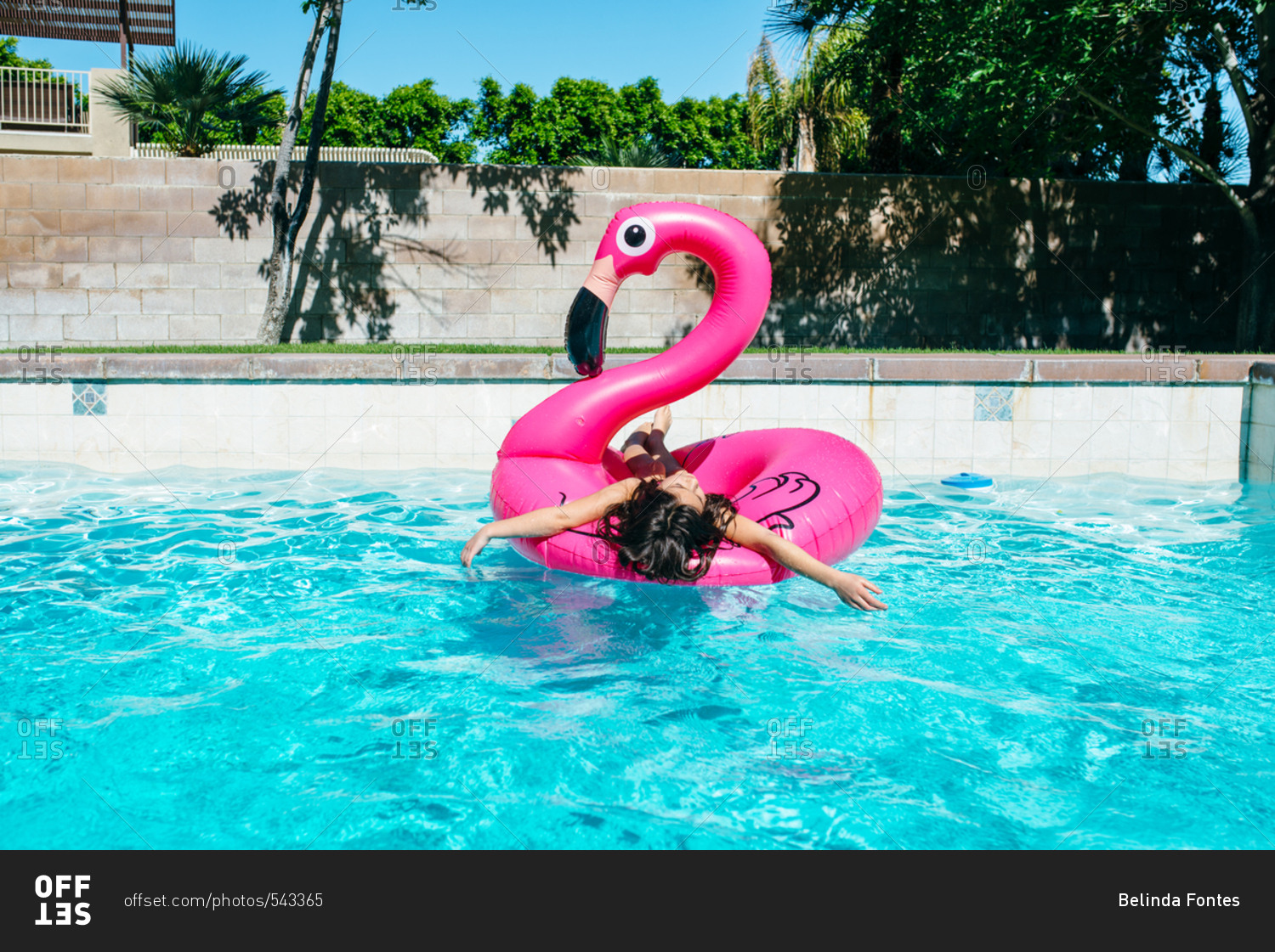 Girl lounging on flamingo float in pool stock photo offset for Pool floats design raises questions