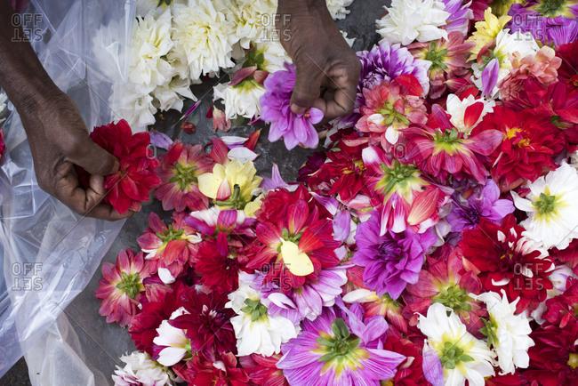 Flower market in Kolkata, India