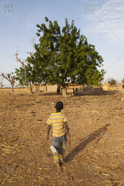 Burkina Faso, 10-year-old child returning with the cows to his house, the village of Ponsom Tenga is located 20 kilometers from Ouagadougou