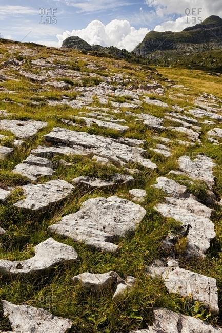 Landscape at Alpe di Nana, Brenta  dolomites, Trentino, Italy