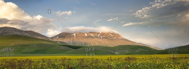 Spring blooming in Piano Perduto Plateau, in background Vettore mount immersed in last light of sunset, Monti Sibillini National Park, Italy