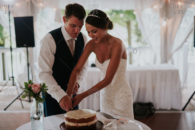 Bride and groom doing cake cutting