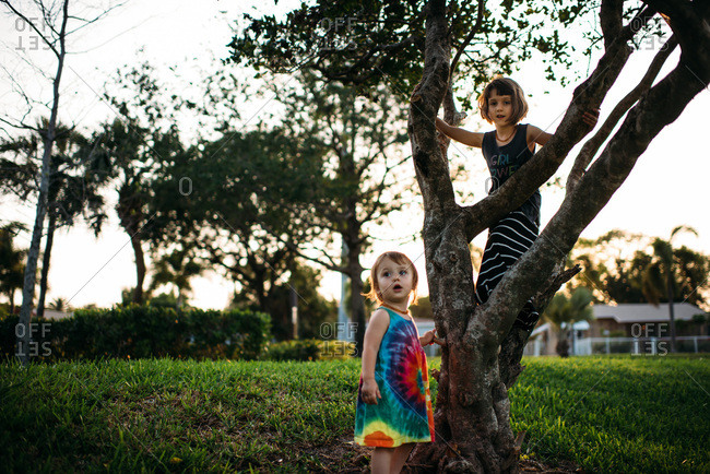 Sister climbing a tree with younger sister nearby