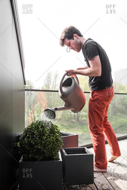 Man watering plants in pots