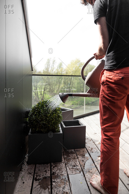 Man watering potted plants