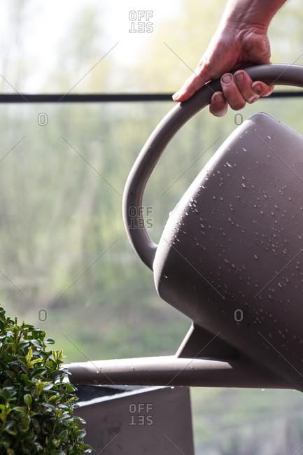 A man watering plants in pots
