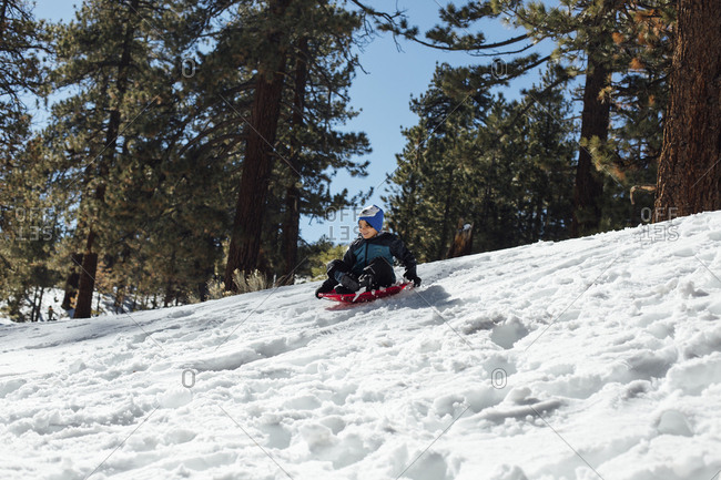 Low angle view of boy tobogganing on snow covered field in forest