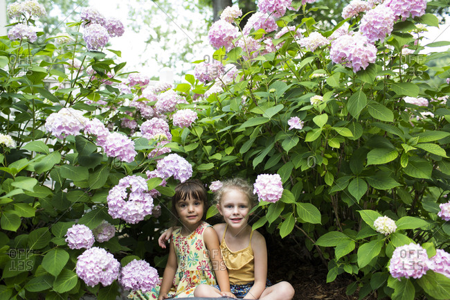 Portrait of smiling sisters sitting by flowering plants in backyard
