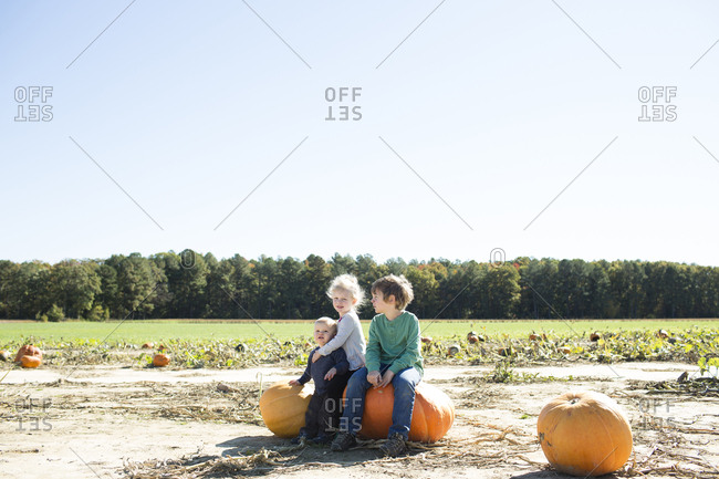 Siblings sitting on pumpkins on field against clear sky during sunny day