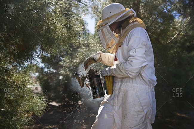 Female beekeeper using beehive smoker while working