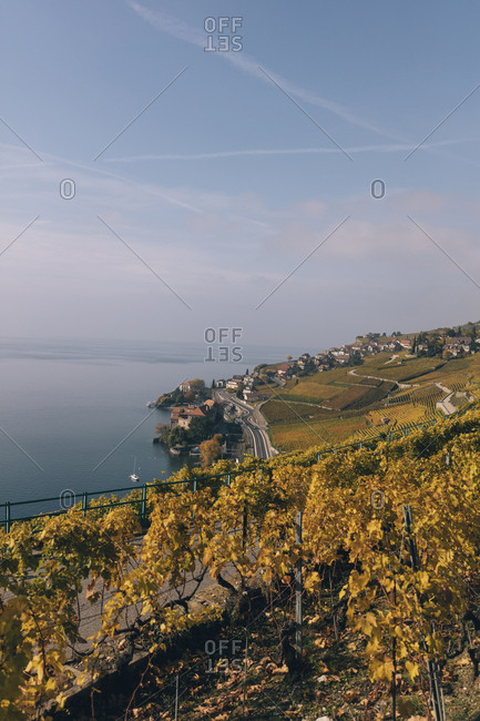 High angle view of terraced vineyard by Lake Geneva against sky