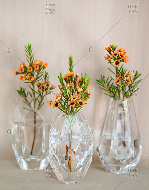 Three clear glass bud vases with orange flowers