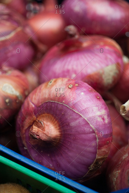 Red onions in close up