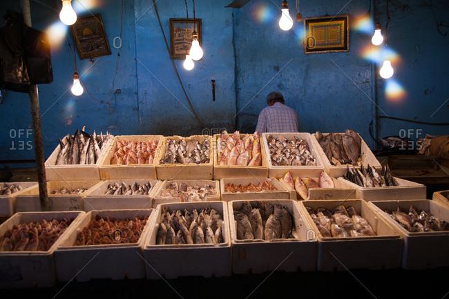 Beirut, Lebanon - September 15, 2008: Fish vendor in market