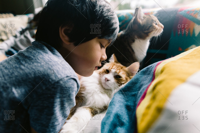 Boy snuggling on couch with two cats