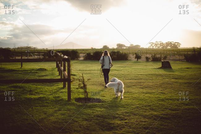 Woman and dog walking in farmland