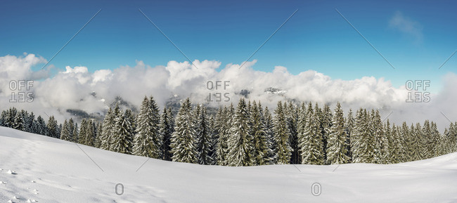 Austria-Vorarlberg- Kleinwalsertal- high route in winter