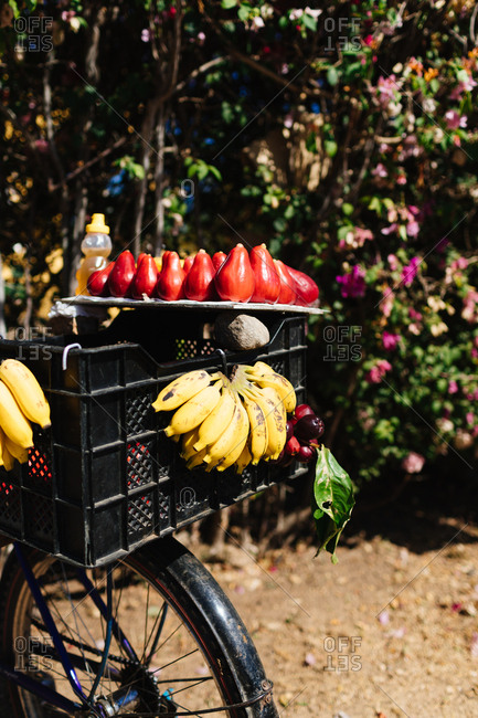Bananas and mango fruit in a bicycle basket for sale