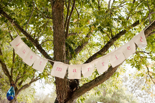 Just married sign hanging in tree
