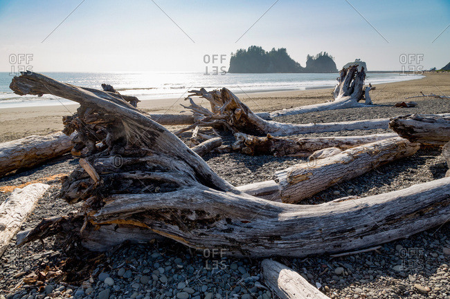 James Island and driftwood on the beach at La Push on the Pacific Northwest, Washington State, United States of America, North America