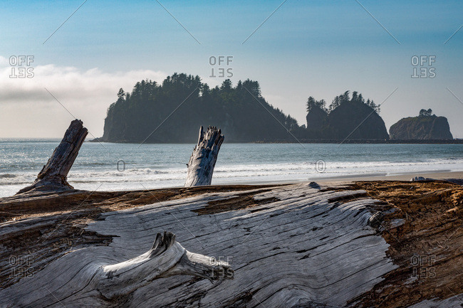 James Island with driftwood on the beach at La Push on the Pacific Northwest coast, Washington State, United States of America, North America