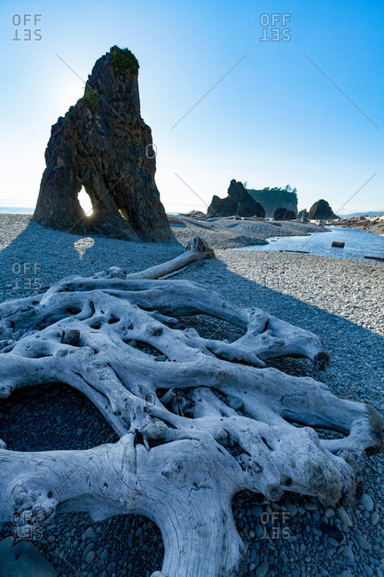 Driftwood and sea stacks on Ruby Beach in the Olympic National Park, UNESCO World Heritage Site, Pacific Northwest coast, Washington State, United States of America, North America