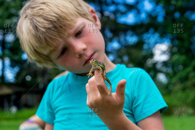 Little boy with frog in the summer