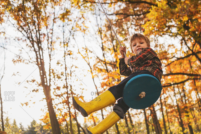 Young boy swinging on a wooden tree swing