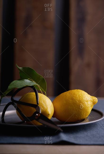 Freshly picked lemons on black plate