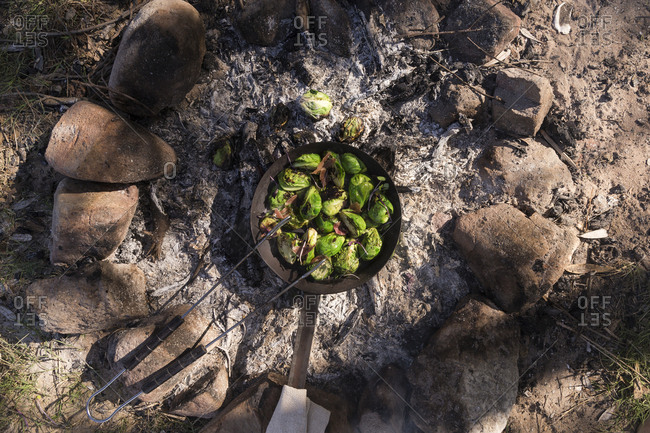 Brussels sprouts cooking in a cast iron skillet over the coals of a campfire