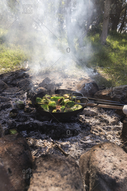Brussels sprouts roasting in a cast iron skillet over the coals of a campfire